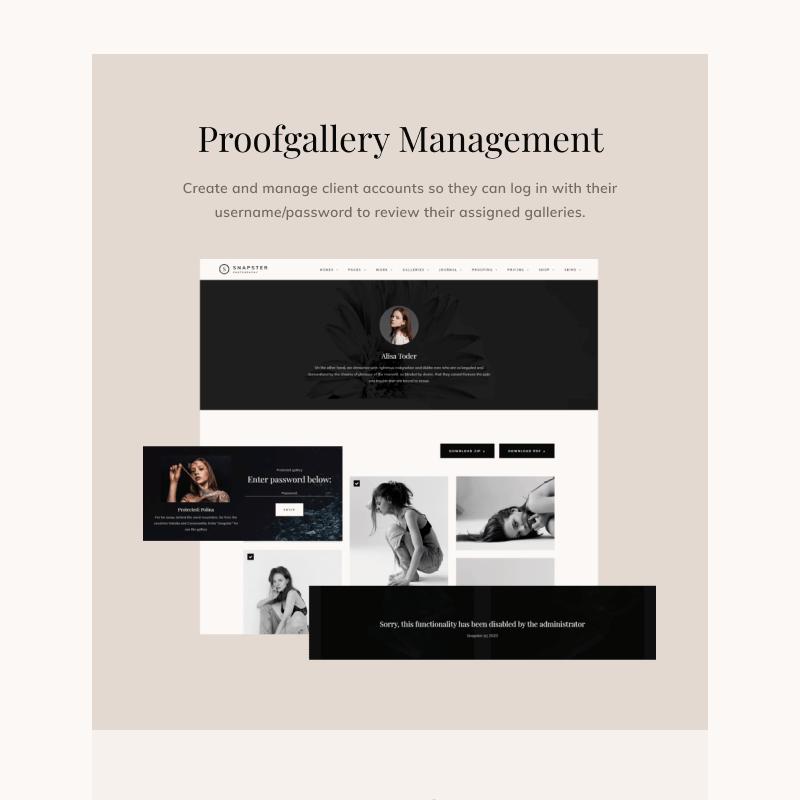 Snapster - Photography WordPress